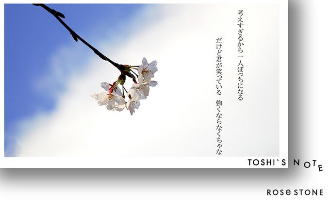 sakusa.jpg