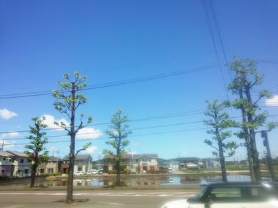 2014-05-17-12-45-57_deco.jpg