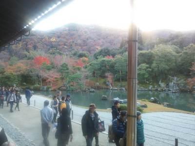 2014-11-29-15-49-01_photo.jpg