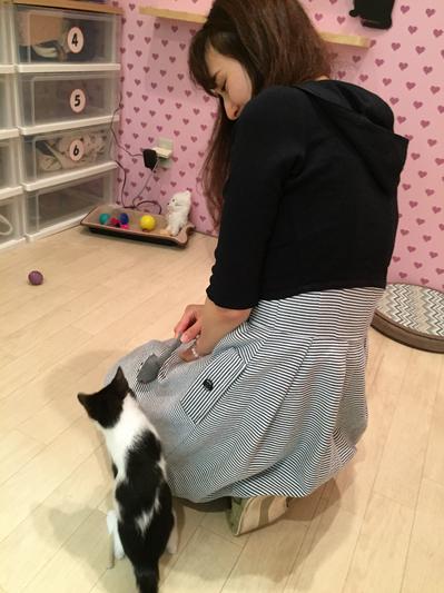 猫カフェ14.jpg